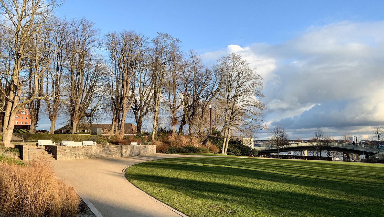 Spazieren im Schlosspark - Susanne Kollmann